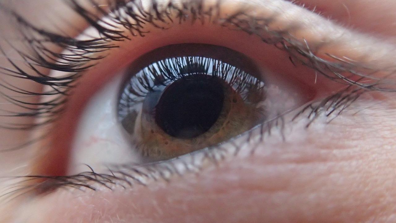 come si cura il glaucoma oculare-che cos'è il glaucoma dell'occhio.jpg